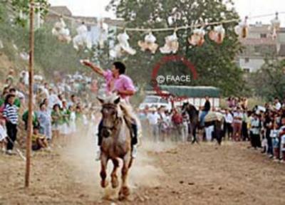 Fiestas populares de tortura
